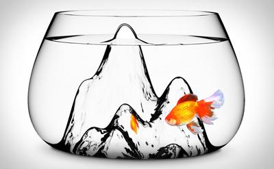fishscape.jpg